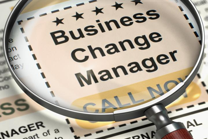 Building a business change career
